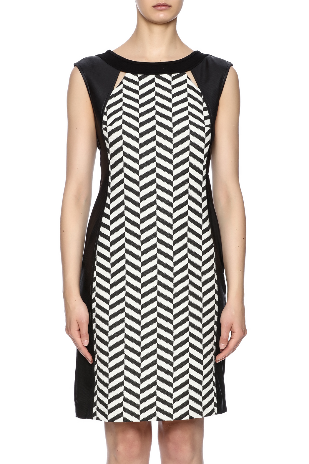Picadilly Panel Dress - Side Cropped Image