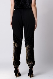 Wanderlux Pila Mixed-Media Jogger - Front full body