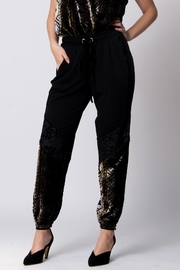 Wanderlux Pila Mixed-Media Jogger - Front cropped