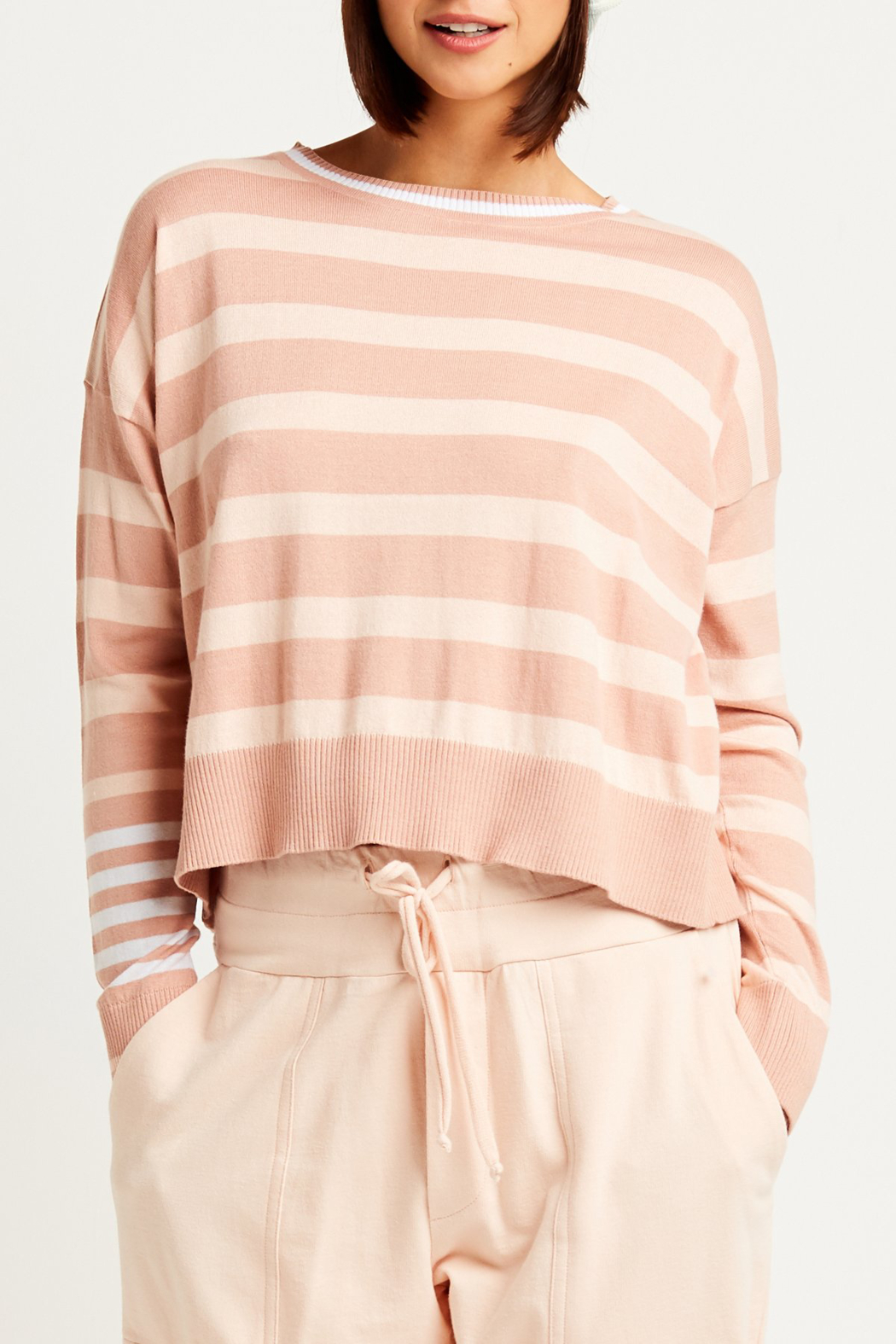 Planet Pima Cotton Classic Stripe Crew Sweater - Main Image