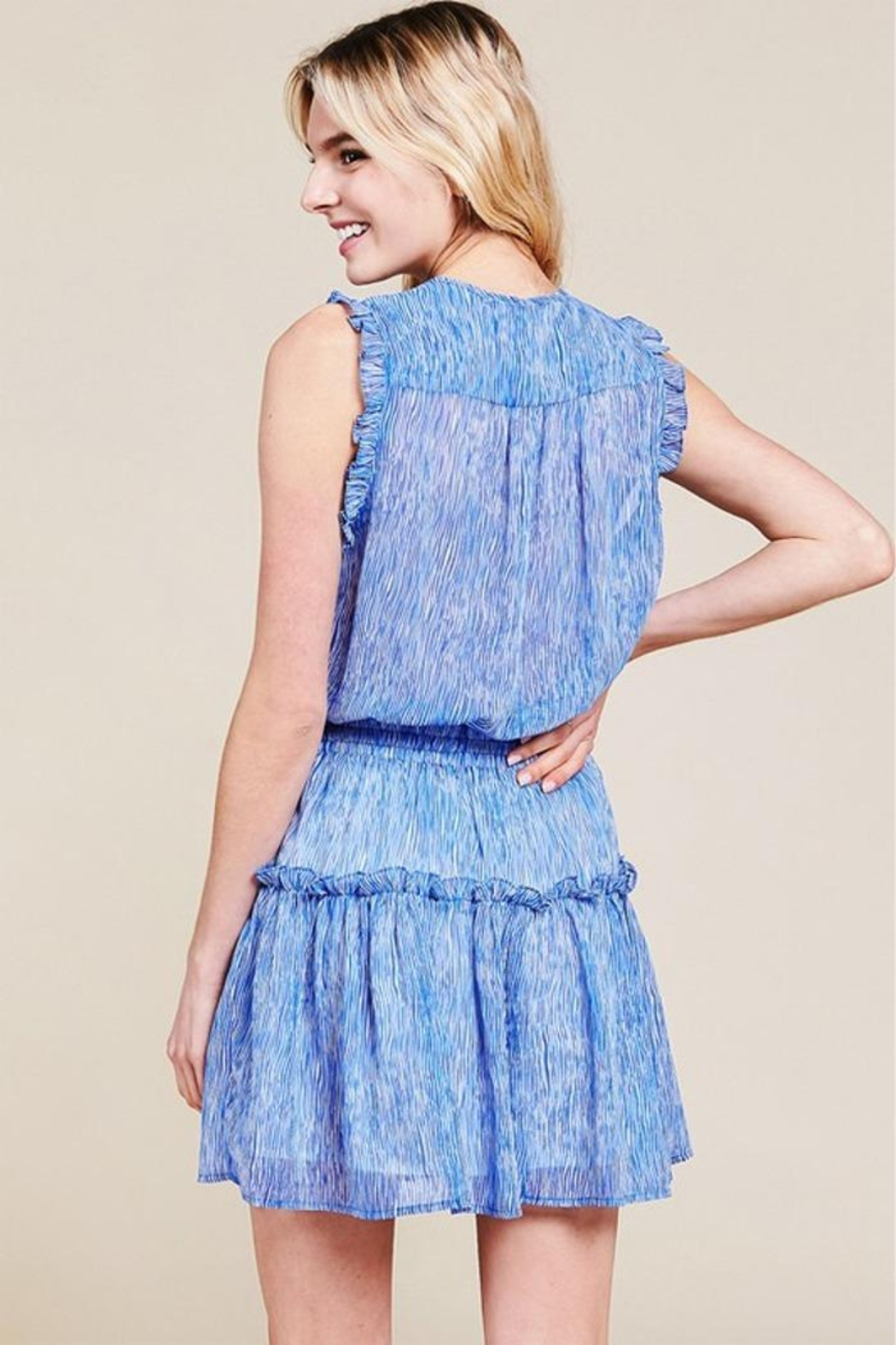 Pinch Sheered Tiered Mini-Dress - Back Cropped Image