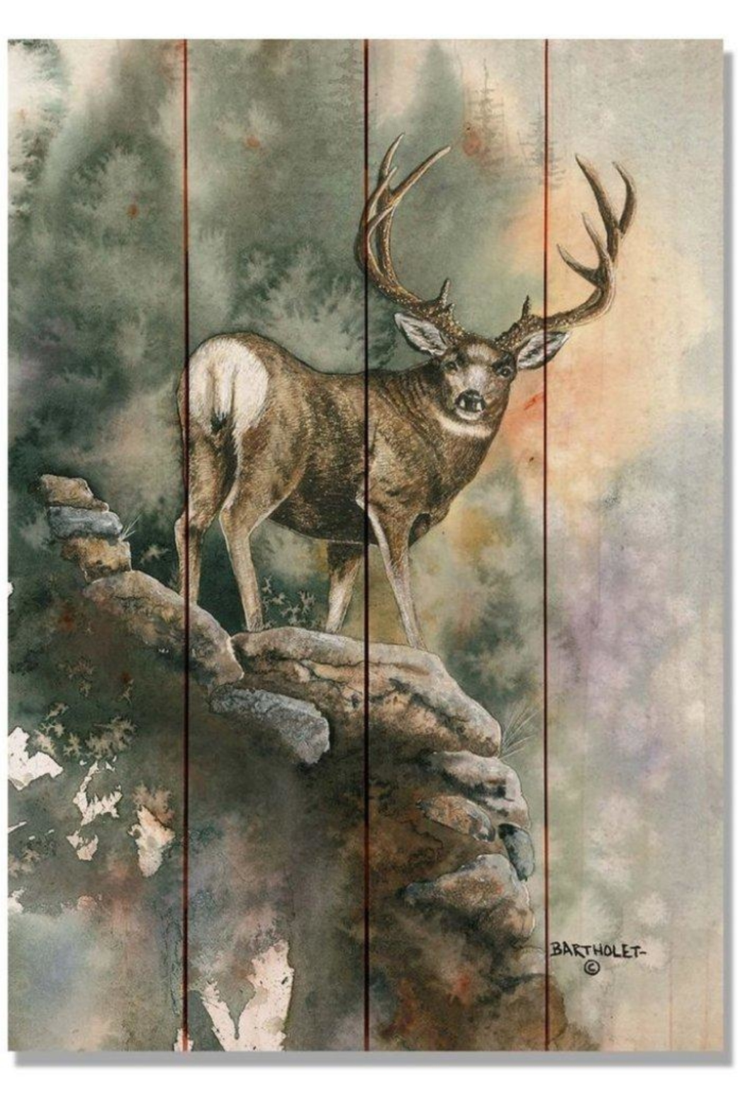 Daydream HQ Pine Mule-Deer Print - Front Cropped Image