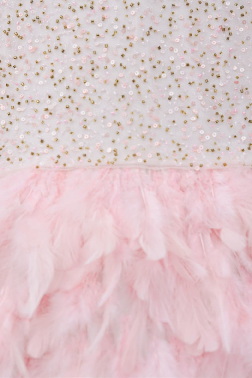 Derhy Pink Feathered Dress - Side Cropped Image