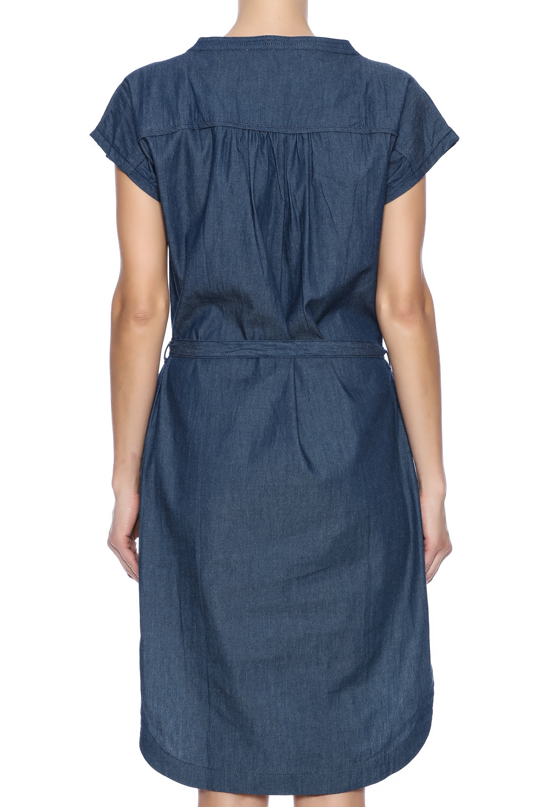Pink Martini Casual Button Down Dress - Back Cropped Image