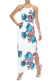 Pink Owl Floral Maxi Dress - Front full body