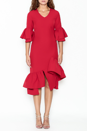 Pink Penguin Red Ruffle Dress - Front cropped