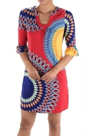 Aryeh Pink Printed Dress - Front full body