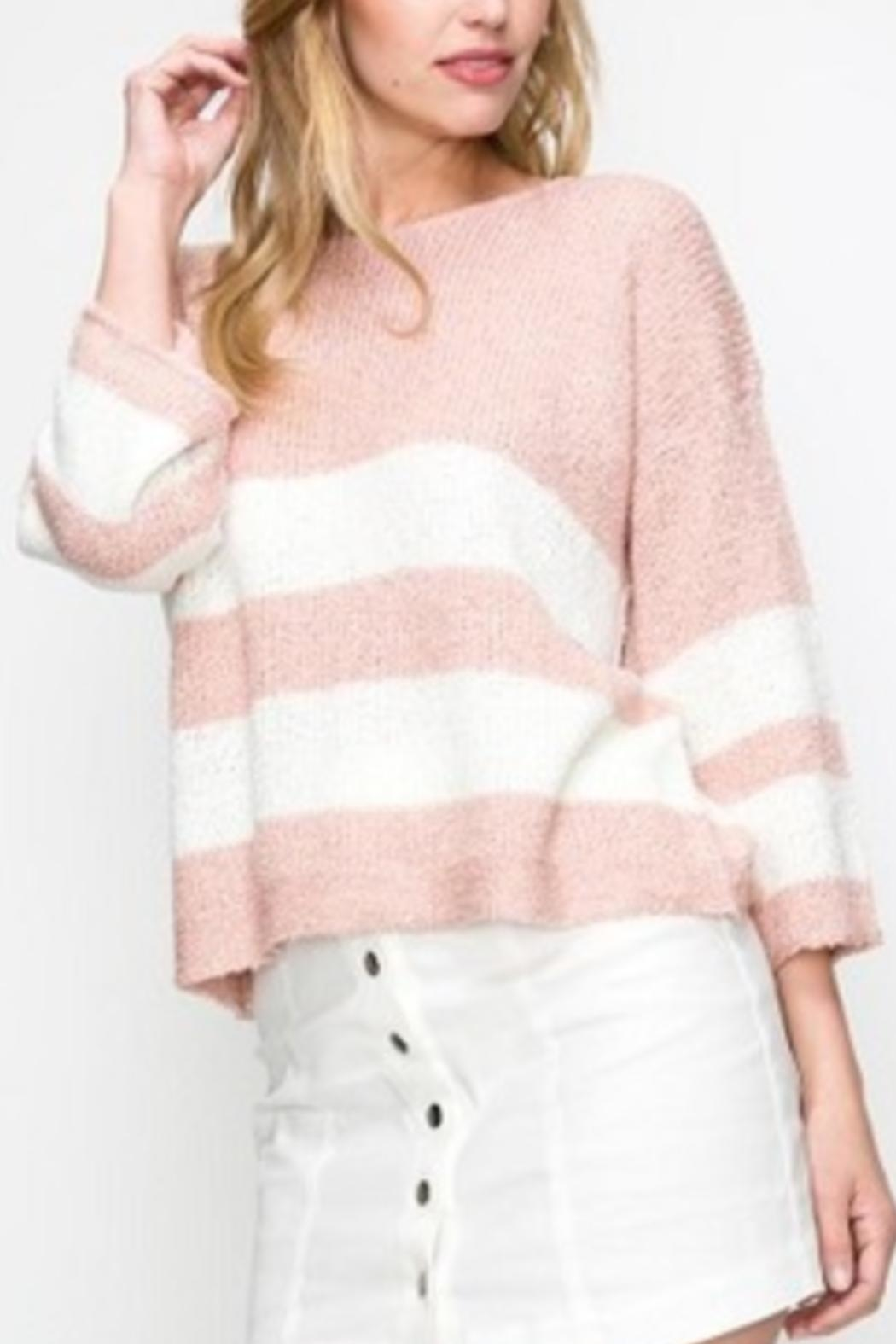 Favlux Pink Striped Sweater - Back Cropped Image