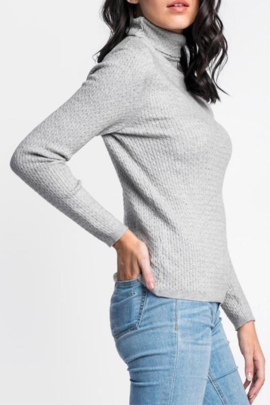 Pink Martini The Kat Sweater - Front Full Image
