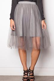 Shoptiques Product: Tutu Skirt