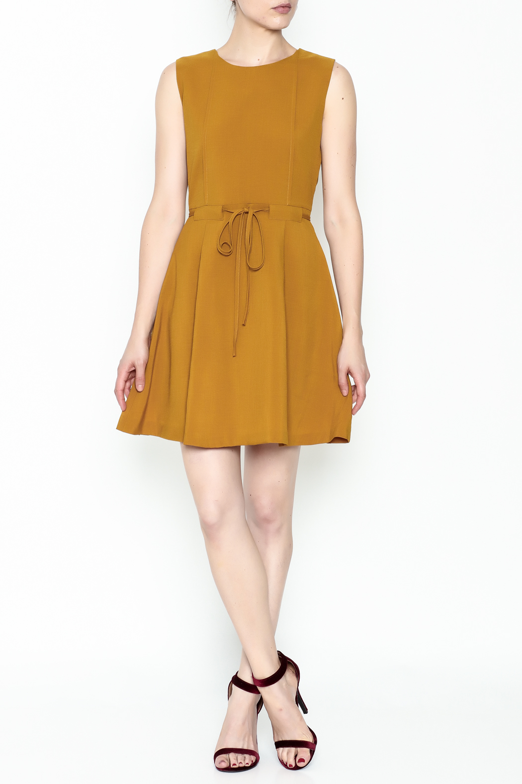 Pinkyotto Waisted Flare Dress - Side Cropped Image