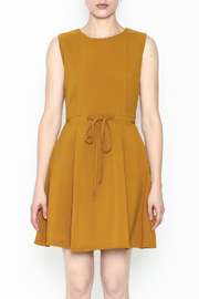 Pinkyotto Waisted Flare Dress - Front full body