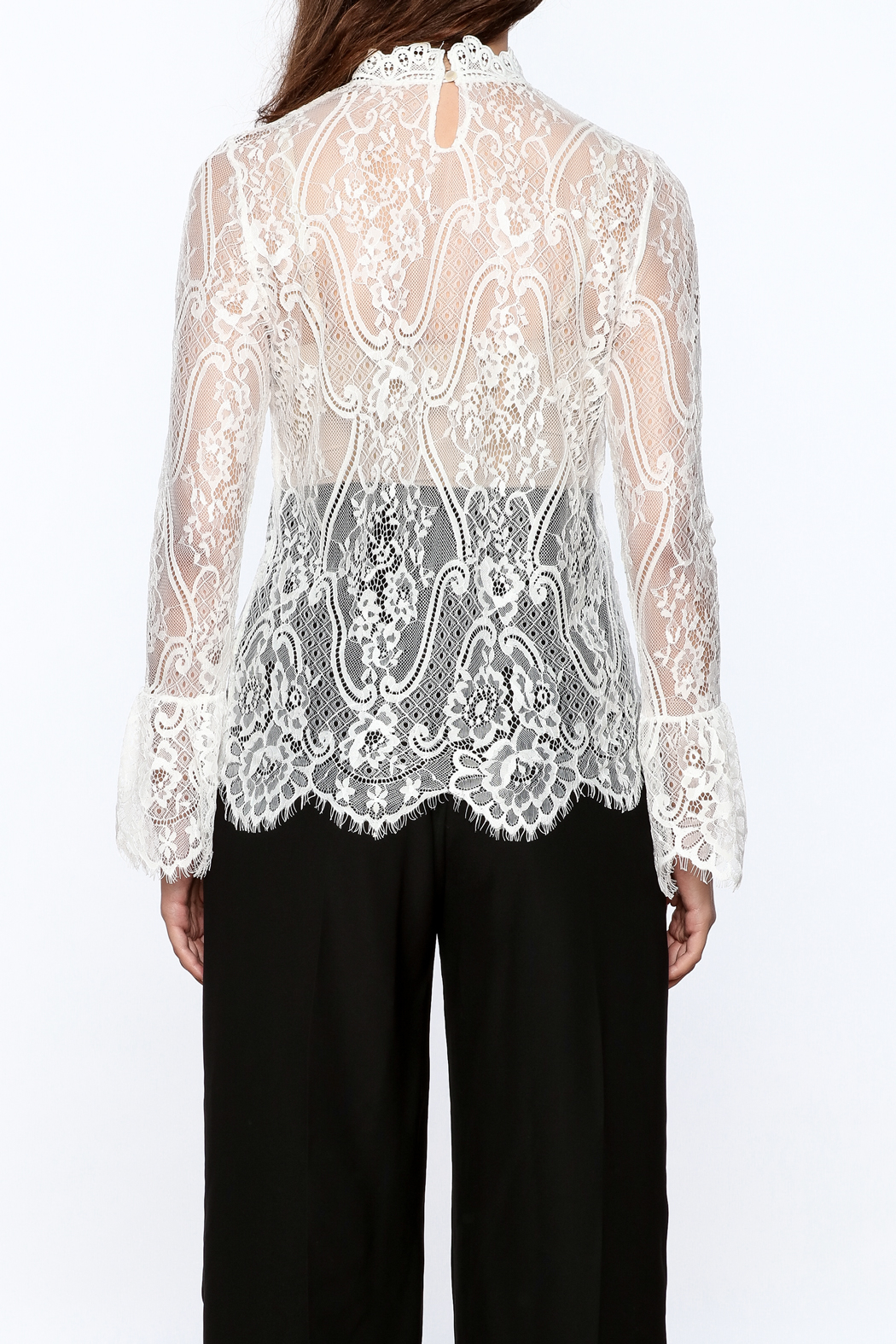 Pinkyotto Sheer Lace Top - Back Cropped Image