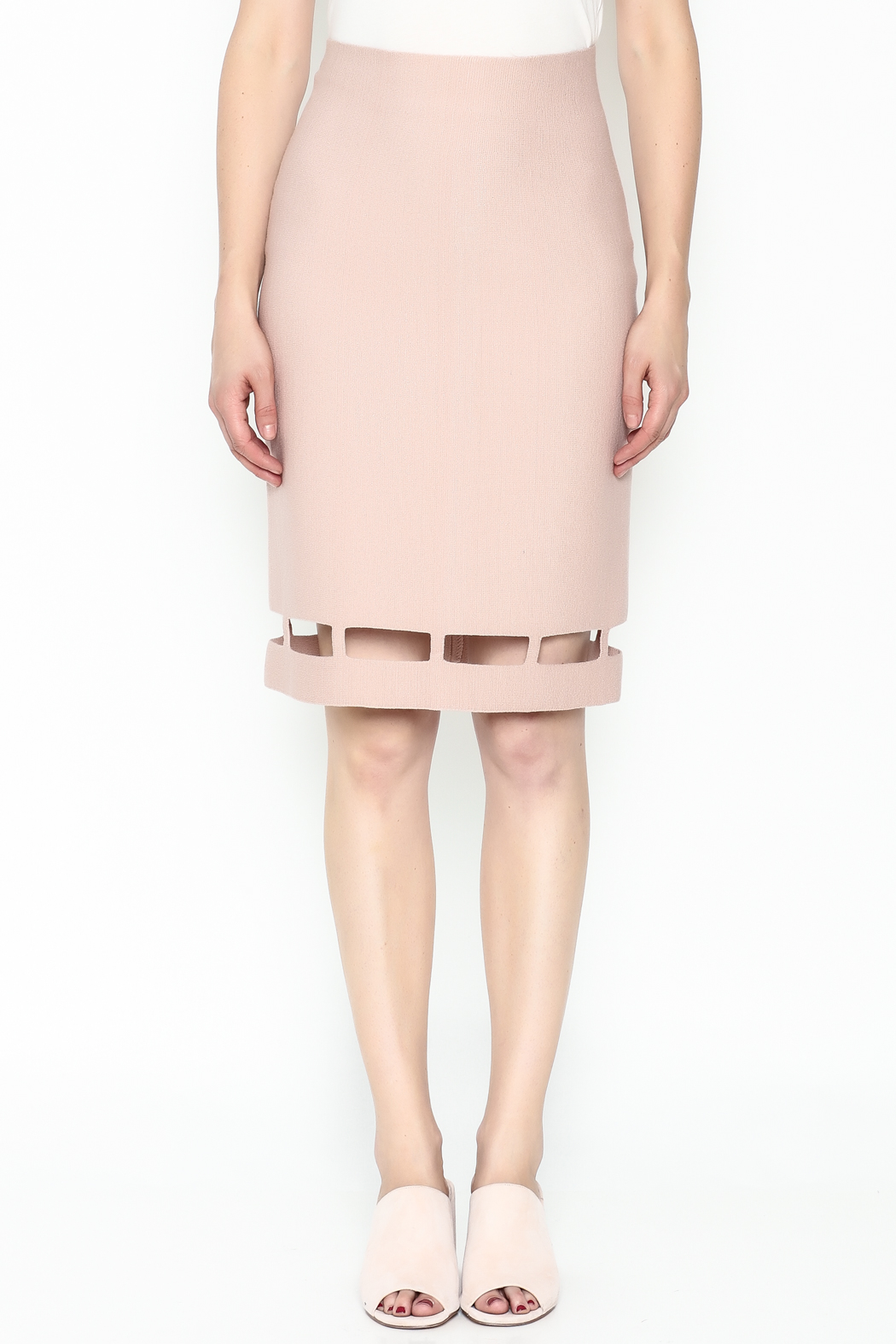 Pinkyotto Pencil Knit Skirt - Front Full Image