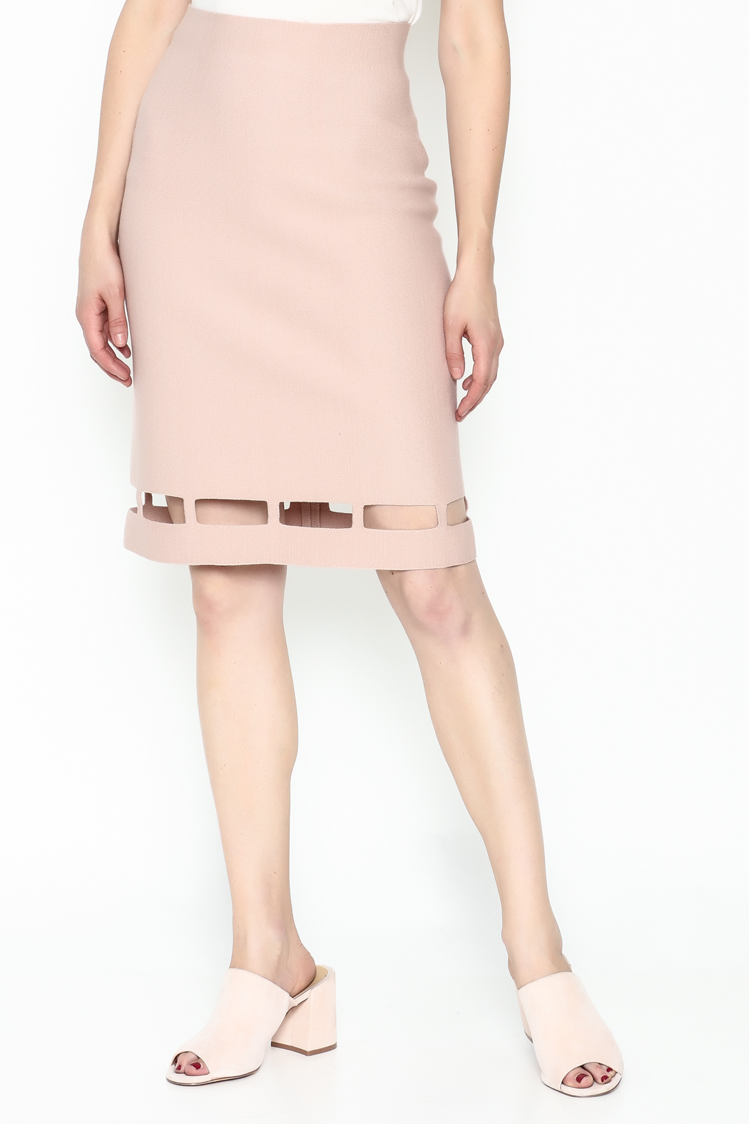 Pinkyotto Pencil Knit Skirt - Main Image