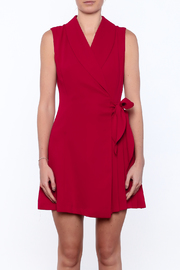 Shoptiques Product: Pleated Fall Wrap Dress - Side cropped