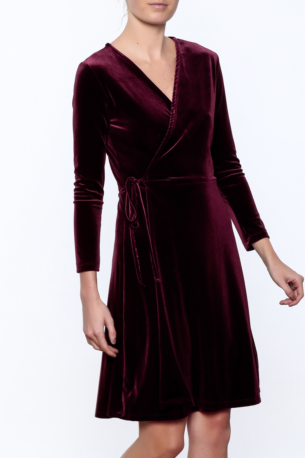 Pinkyotto The Velvet Rope Dresses - Front Cropped Image