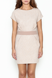 Pinkyotto Waist Pleated Dress - Front full body