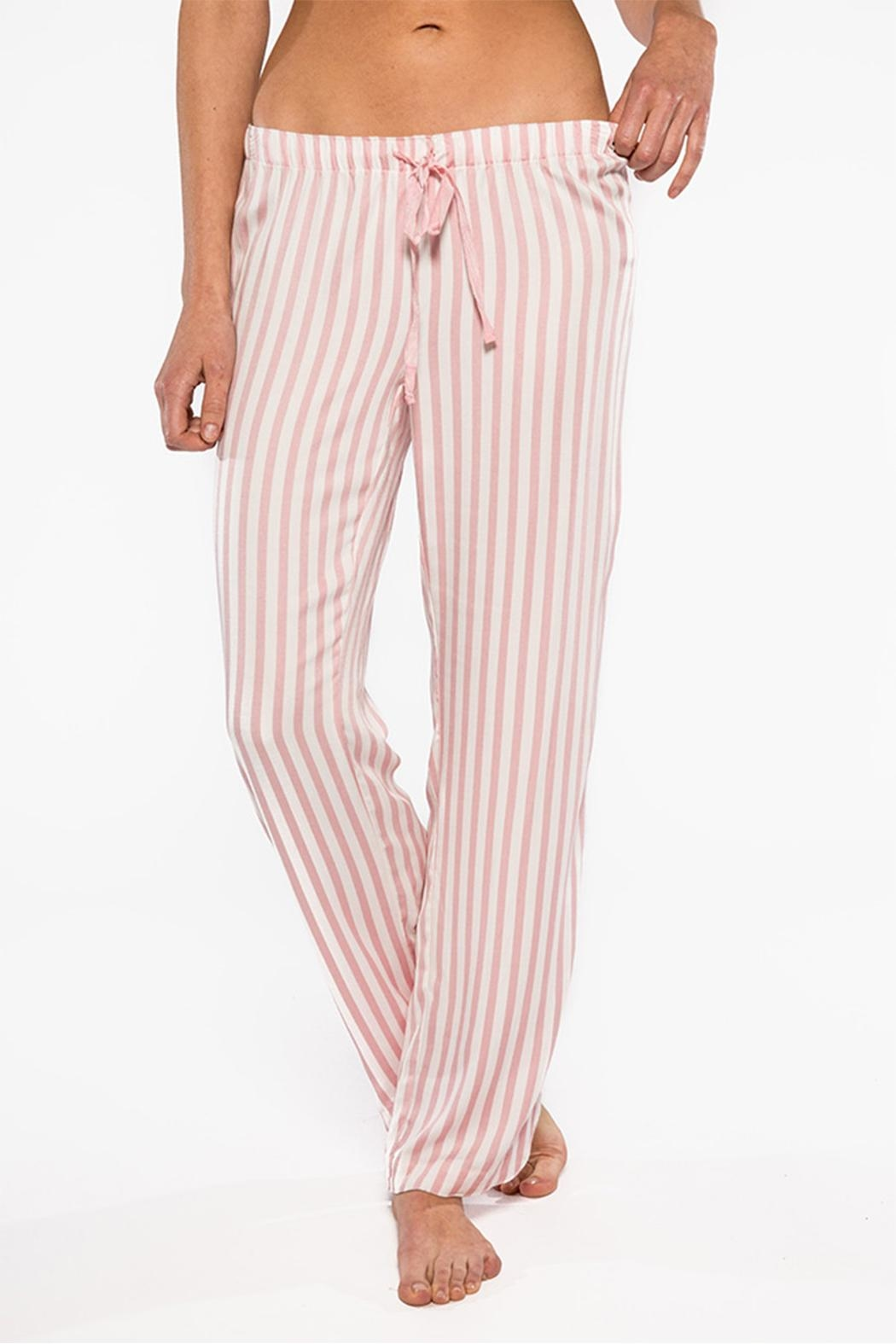 PJ Salvage Striped Pants - Front Cropped Image