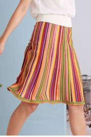Ivko Playful Stripe Skirt - Product Mini Image