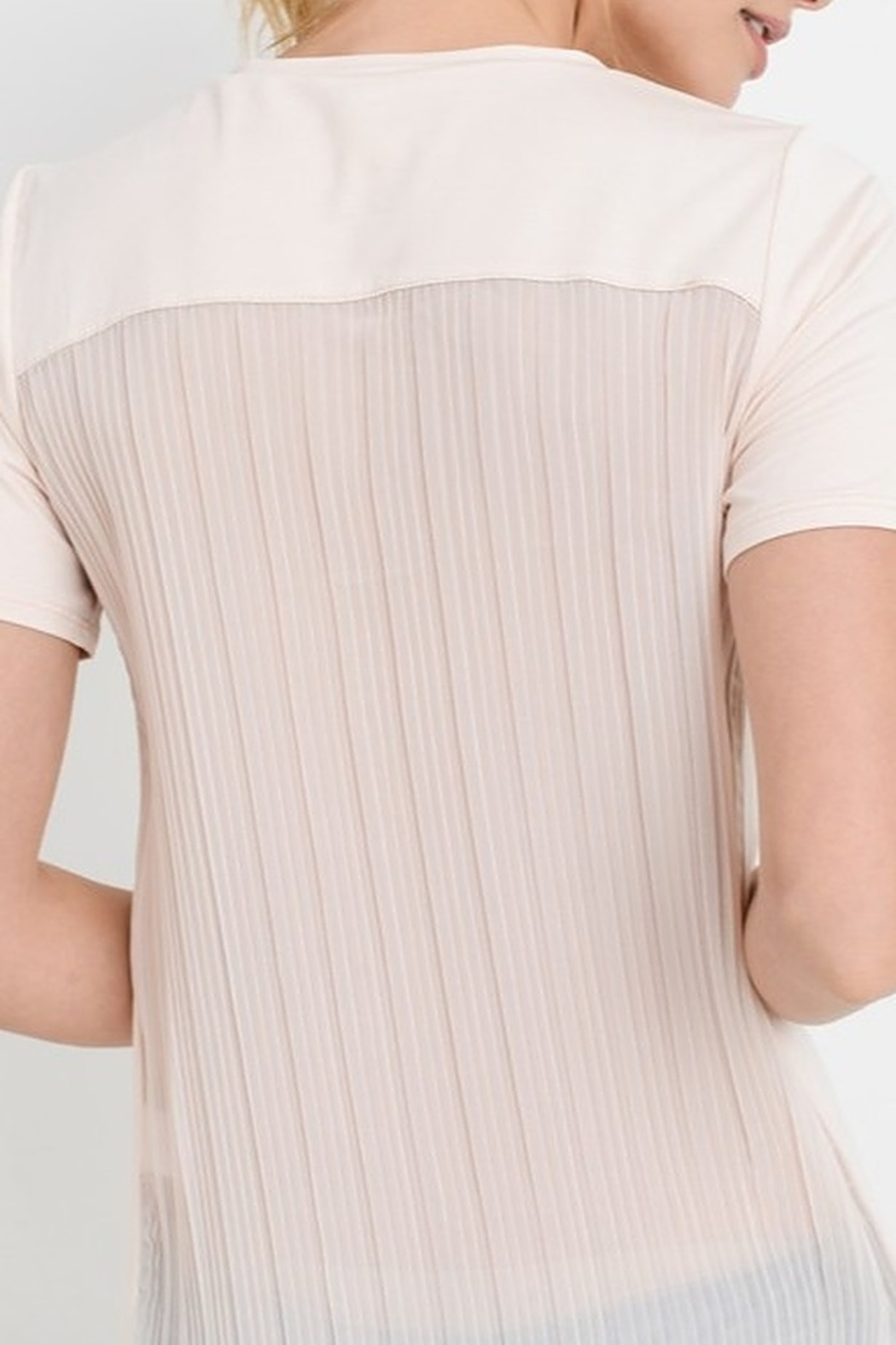 Papercrane Pleated Back Top - Back Cropped Image