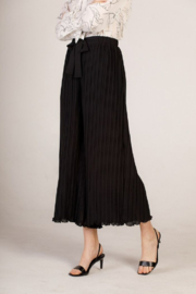 Moodie Pleated Culotte Pant - Front full body