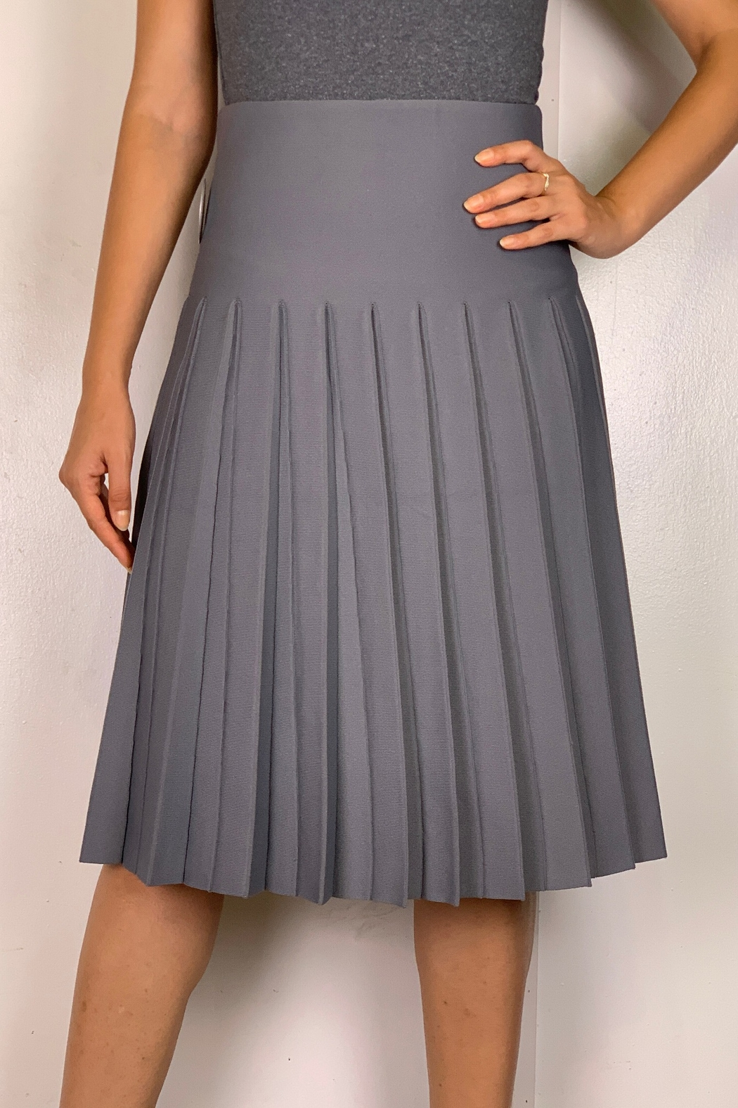 Mossaic Pleated Knit Skirt - Front Cropped Image