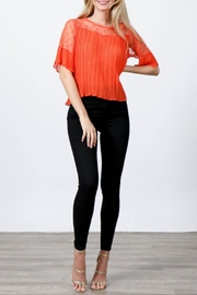 Hesperus Pleated Mesh Blouse - Product Mini Image