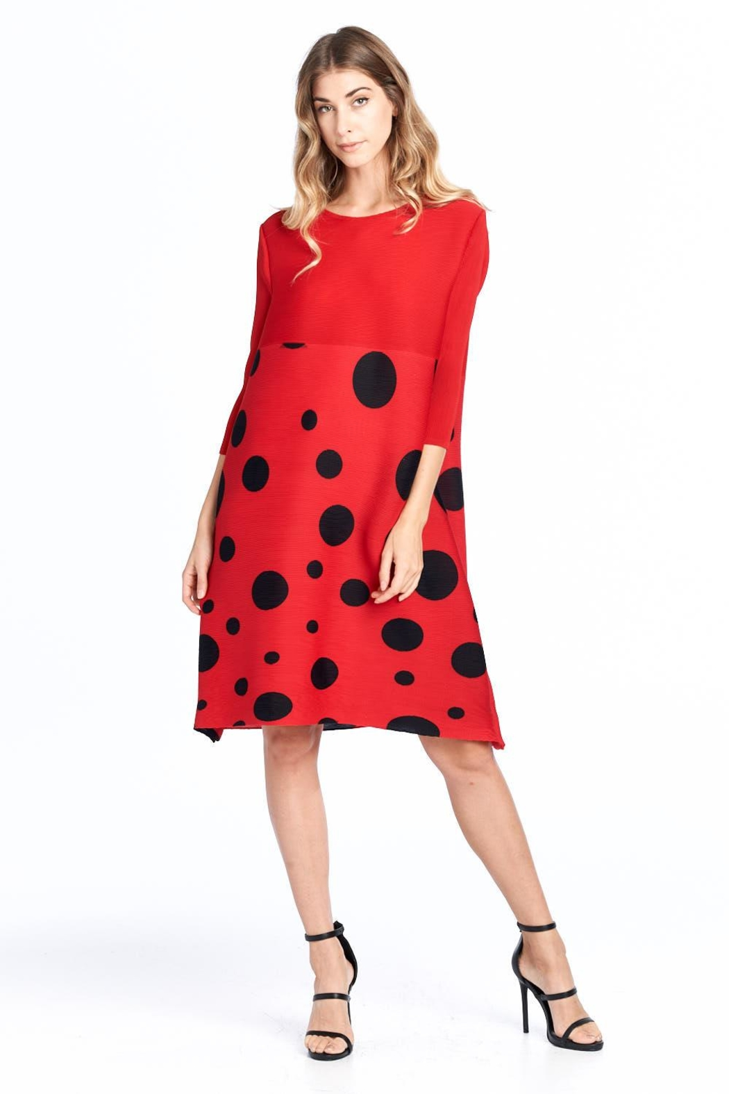 Nabisplace Pleated Polkadots Dress - Front Full Image