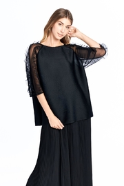 Nabisplace Pleated Seethrough Top - Other