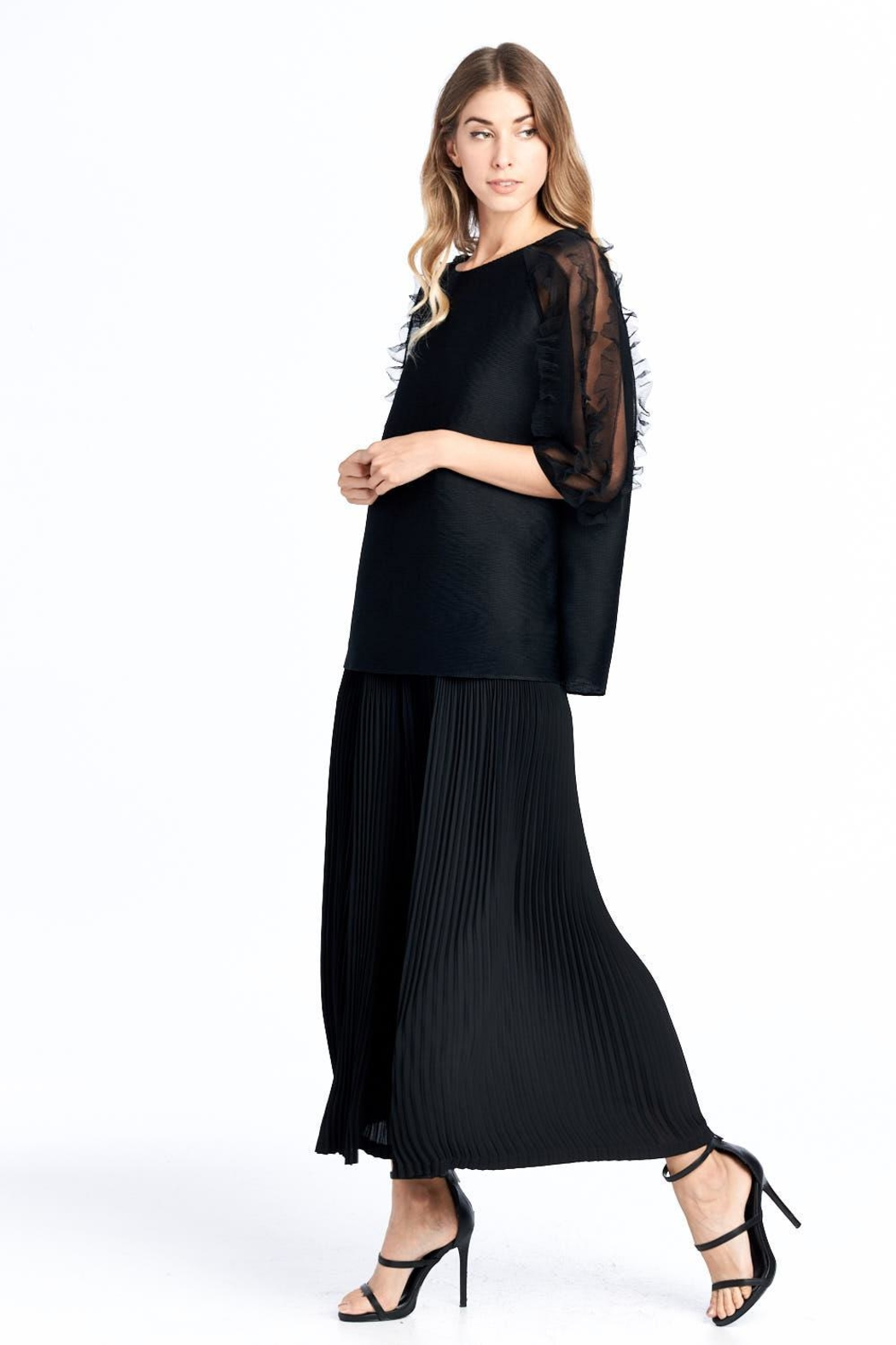 Nabisplace Pleated Seethrough Top - Side Cropped Image