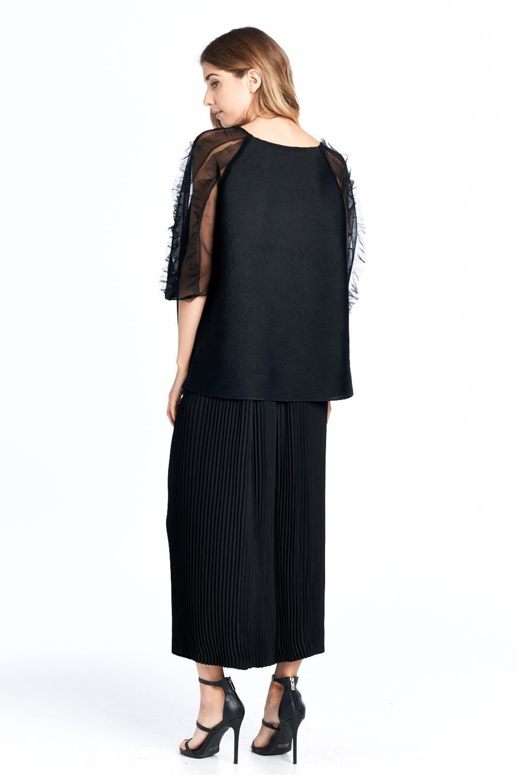 Nabisplace Pleated Seethrough Top - Back Cropped Image