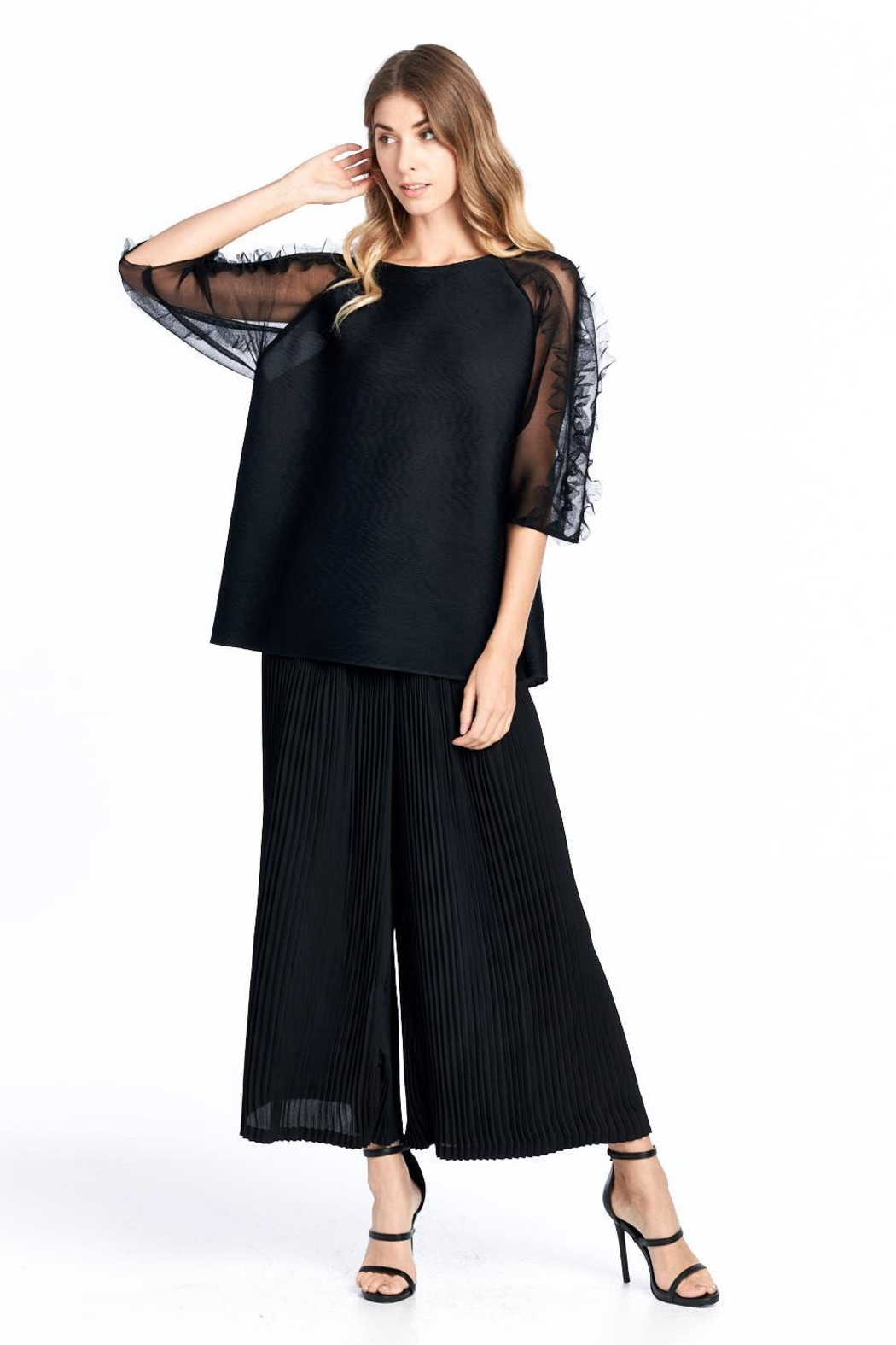 Nabisplace Pleated Seethrough Top - Front Full Image