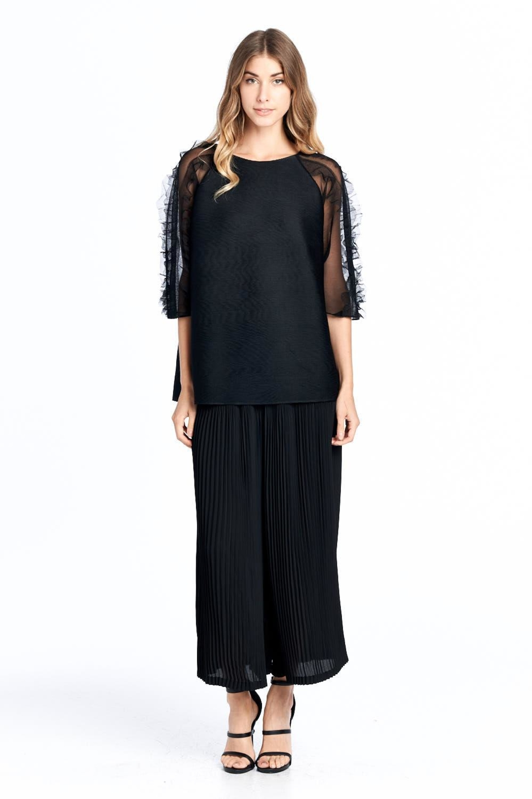 Nabisplace Pleated Seethrough Top - Front Cropped Image