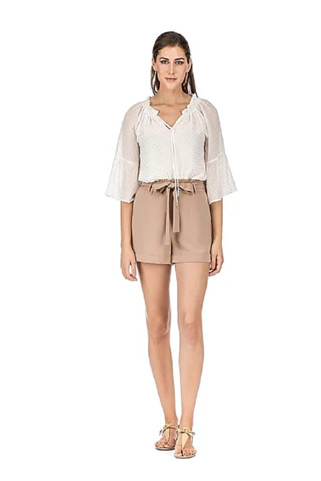 Jade Pleated Waist Shorts - Front Cropped Image
