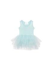 Plum Prim Tutu Dress - Front cropped