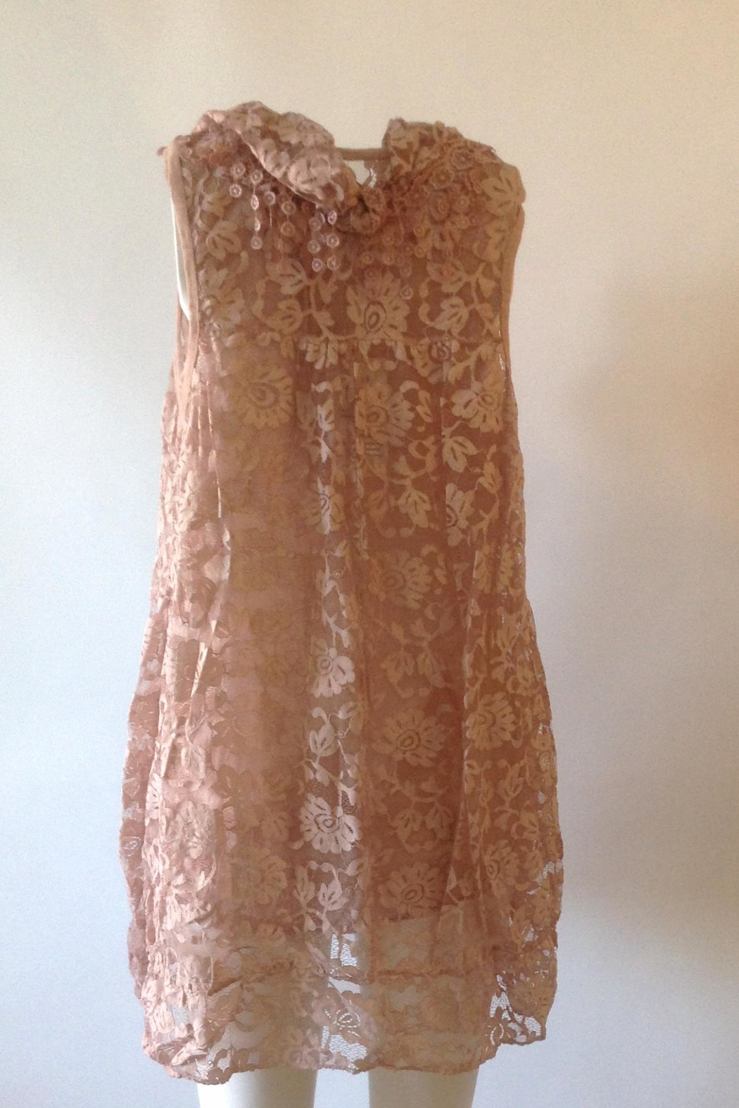 Plum Romantic Lace Tunic - Side Cropped Image