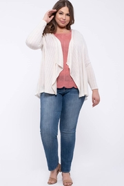 perch Plus Crochet Back Knit Cardigan - Front cropped