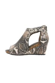 Pierre Dumas Podium-5 Wedge - Front cropped