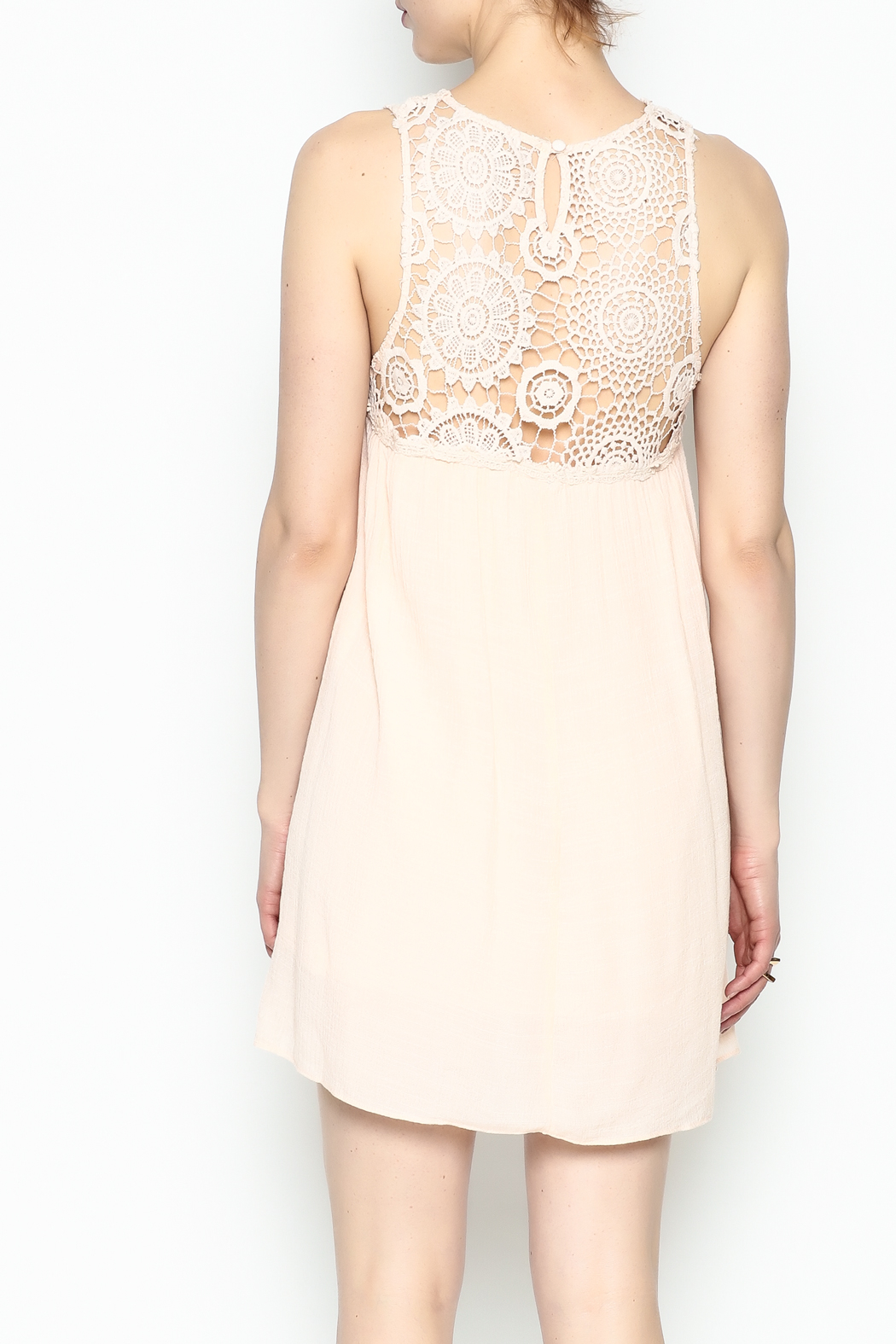 Poetry Lace Summer Dress - Back Cropped Image
