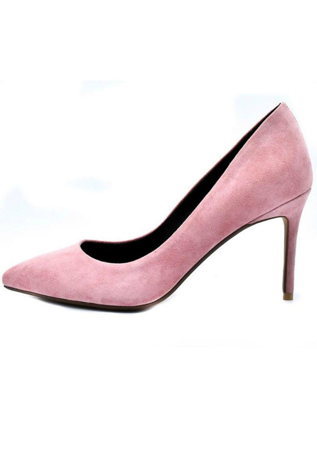GOLO Pointy Heeled Pump - Front Cropped Image