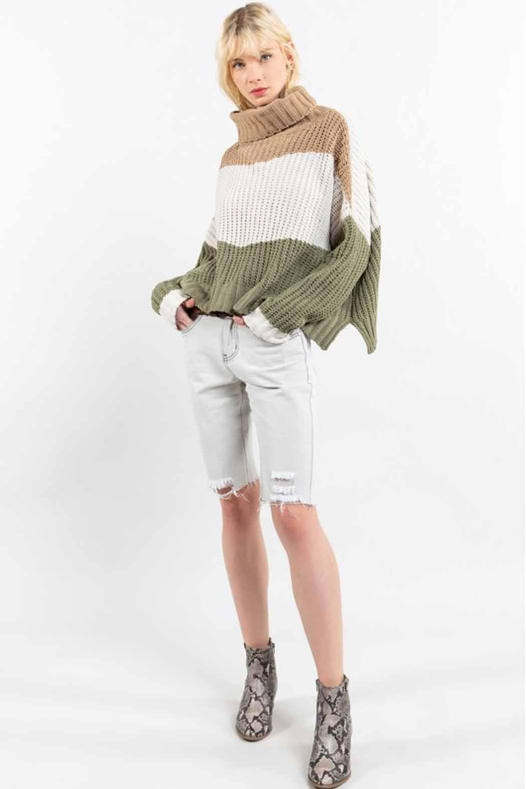 POL Colorblock Sweater - Back Cropped Image