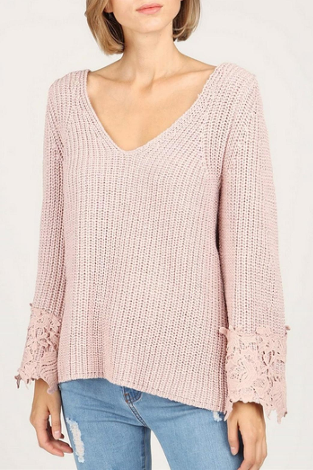 POL Pol Crochet Sweater - Front Cropped Image