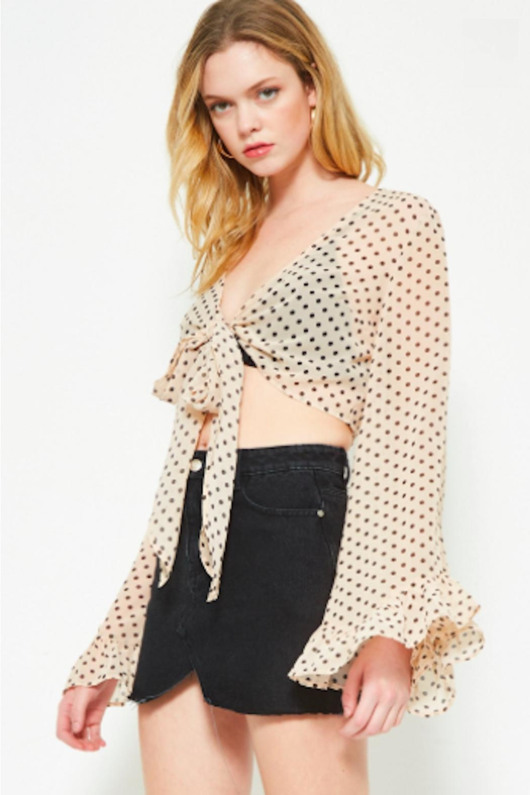 TIMELESS Polka Crop Top - Side Cropped Image