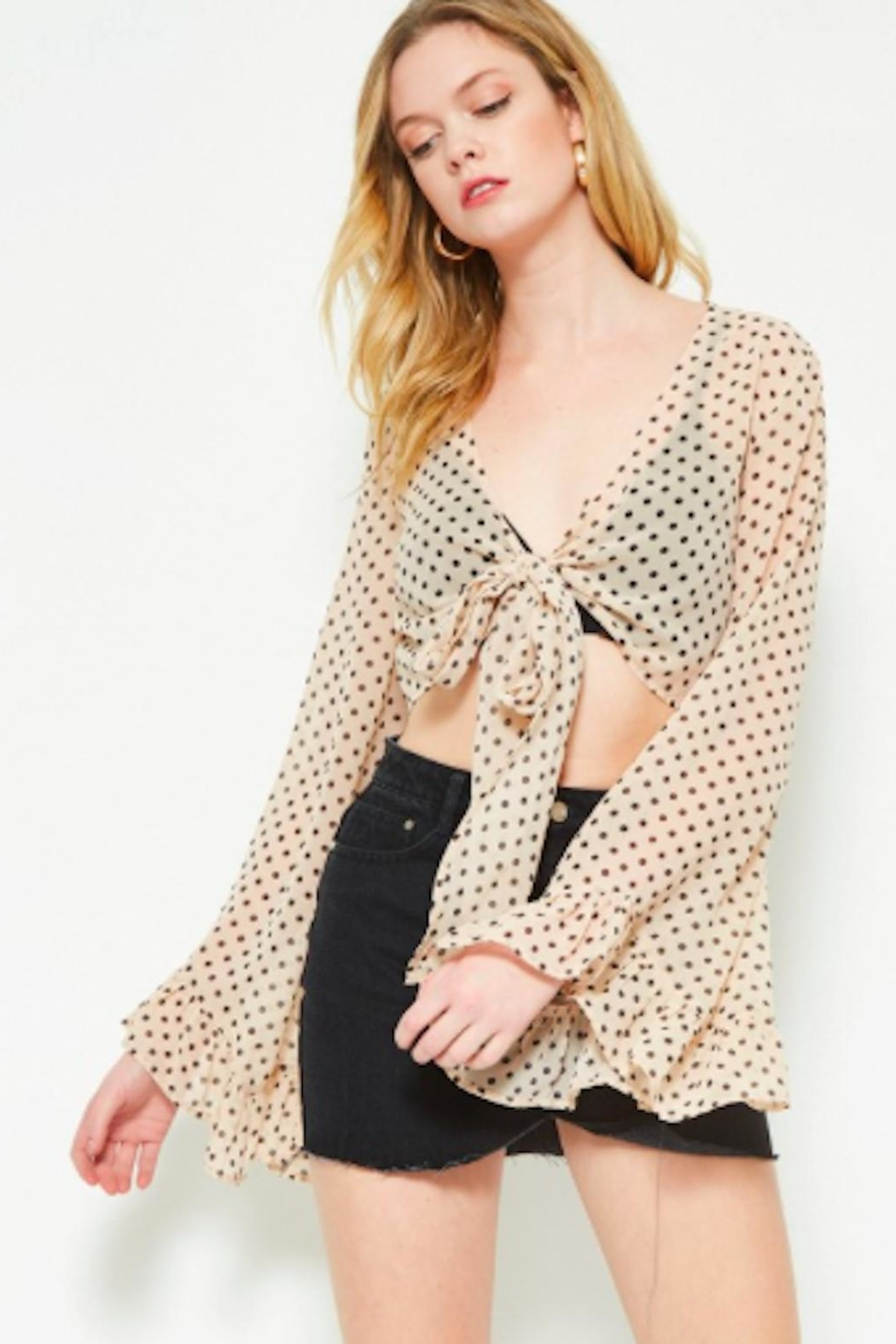 TIMELESS Polka Crop Top - Front Cropped Image