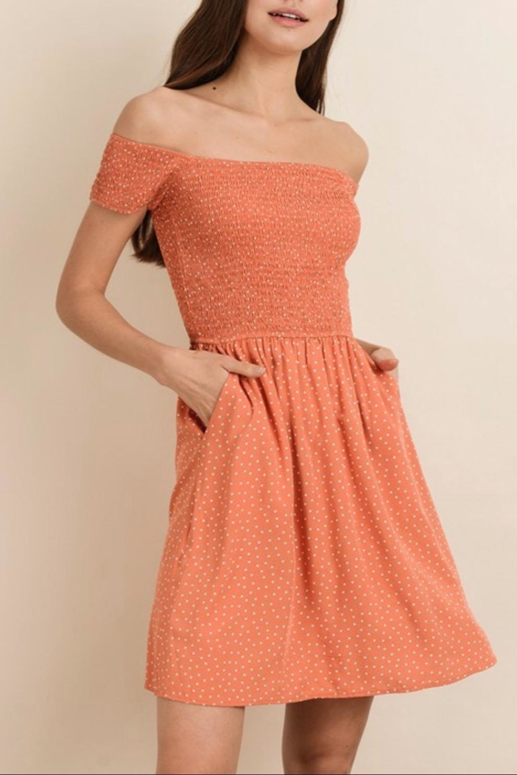 bd6dd002a01ee7 dress forum Polka Dot Dress from Wisconsin by Apricot Lane ...
