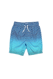 Appaman Polka Swim Trunk - Front cropped