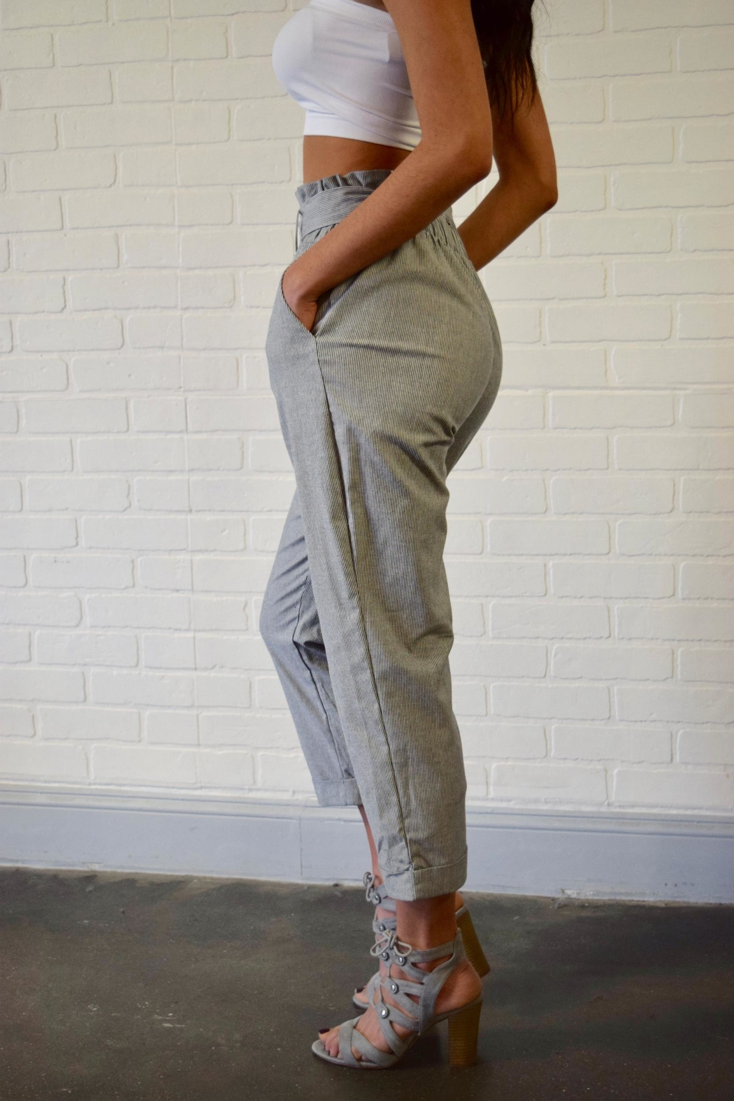 Potter's Pot Belted Striped Trousers - Side Cropped Image