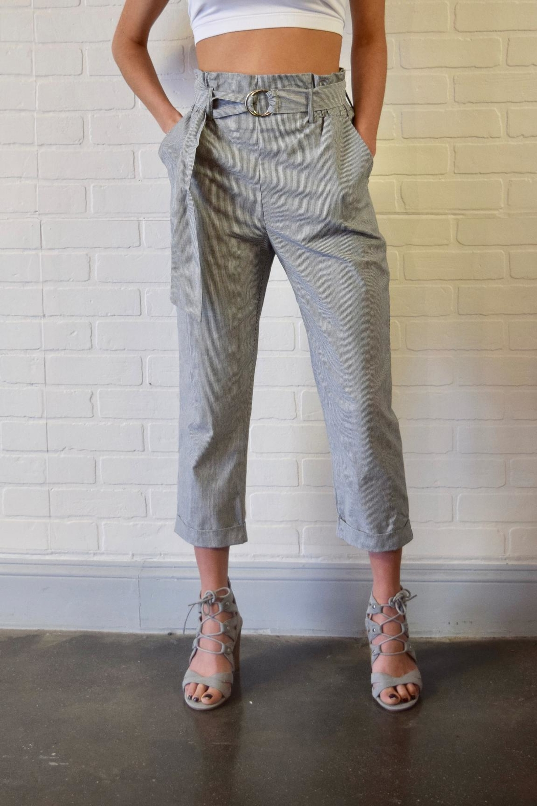 Potter's Pot Belted Striped Trousers - Front Full Image