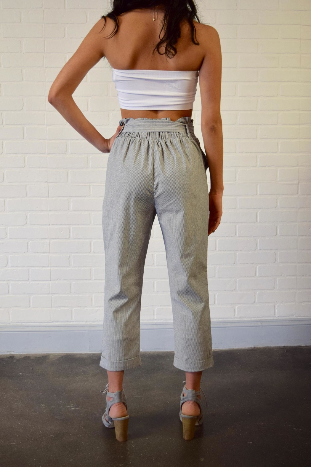 Potter's Pot Belted Striped Trousers - Back Cropped Image